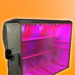 Гроубокс для растений из доступных и недорогих материалов