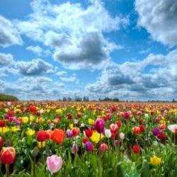 Режим работы на майские праздники